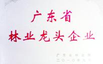 粤田木业集团公司荣获广东省林业龙头企业称号